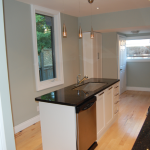 Hamilton Street Design and Renovation - kitchen
